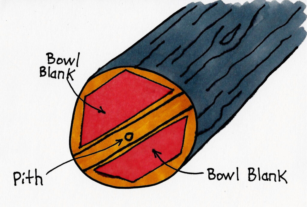 Sketch of the end of a log, marked for extracting 2 bowl blanks. By Doug's Turnings.