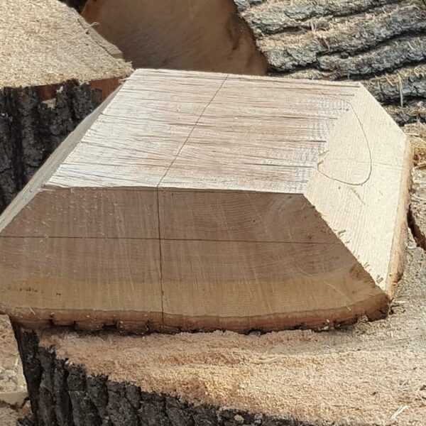 Big Chunk of Wood Marked for Natural Edge Bowl